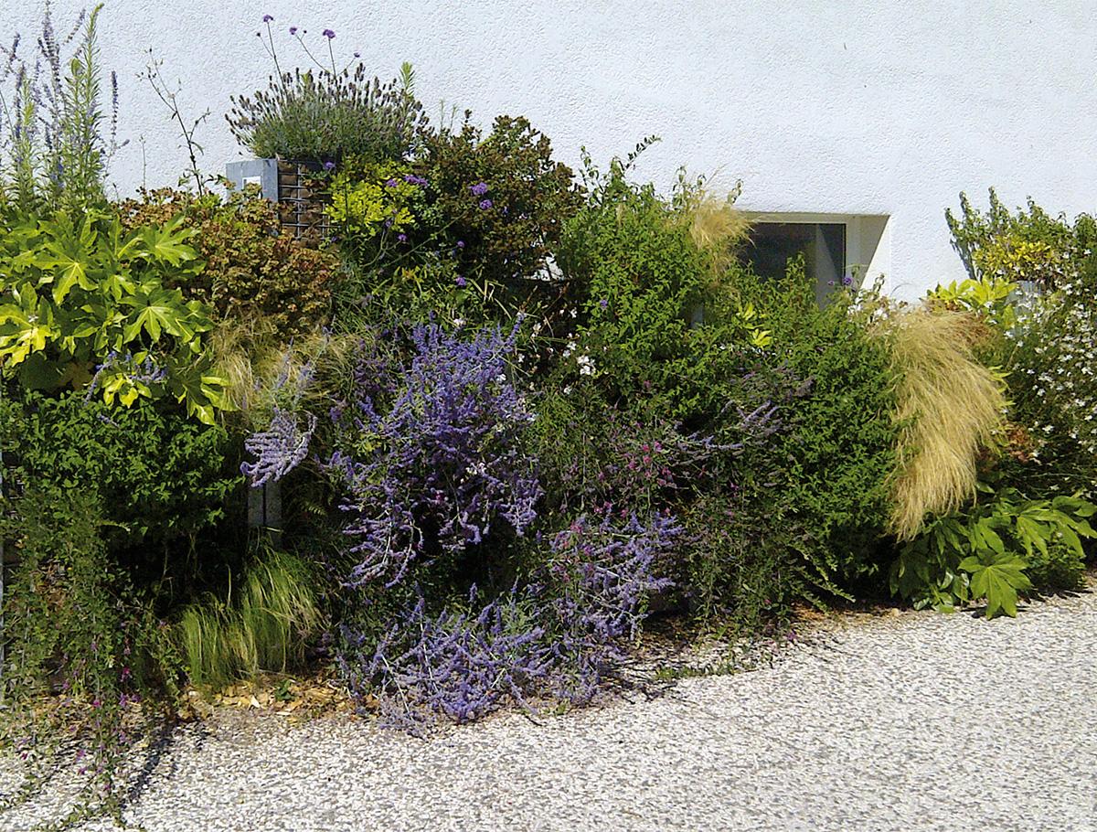 Mur végétalisé 1 face pour maison individuelle - Vendée -