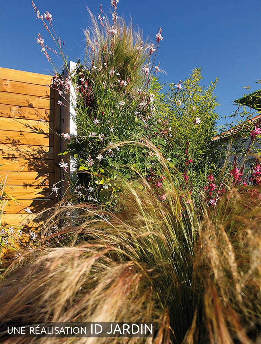 Mur végétalisé associé à une clôture bois - Vendée -