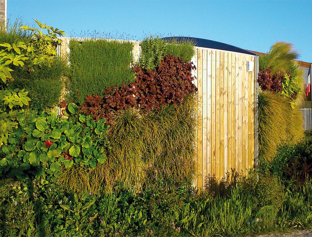 Mur végétalisé 1 face épaisseur 25 cm - Lycée Professionnel Tabarly - Vendée -