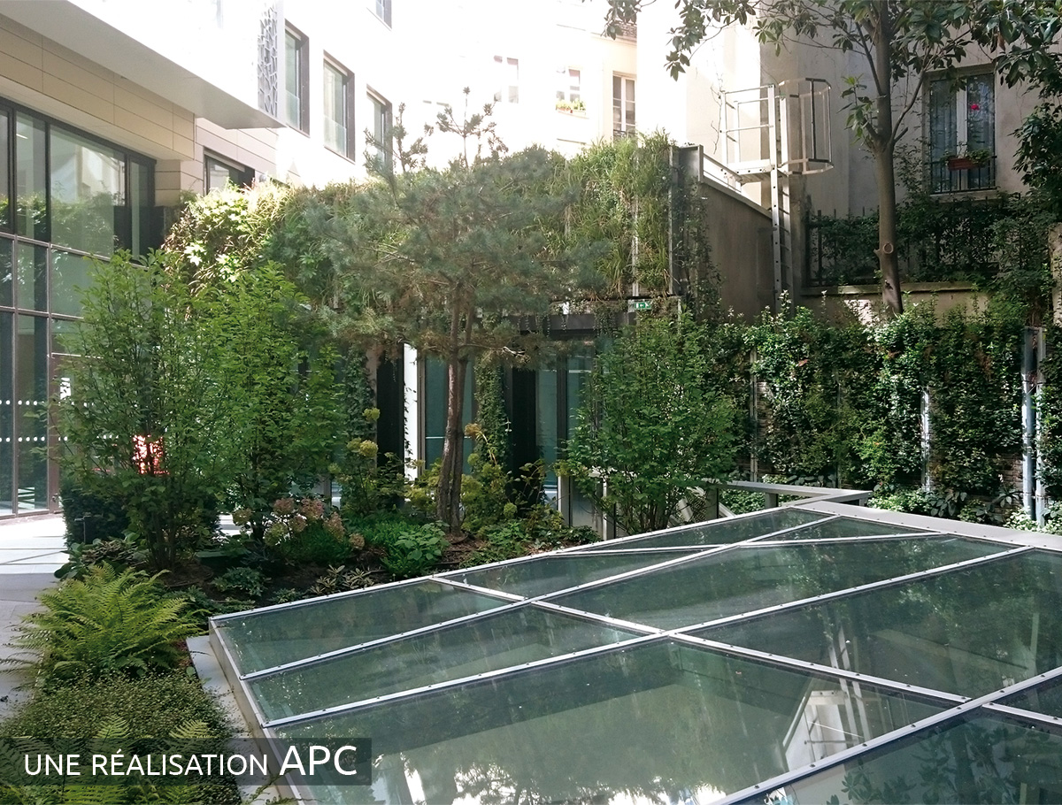 Vue d'ensemble d'une végétalisation urbaine - Paris