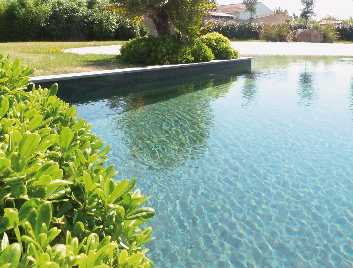 Bassin de baignade naturelle, un choix limpide - Vendée -